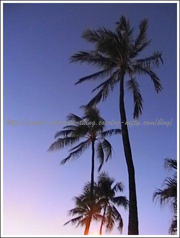 Hawaii02_2