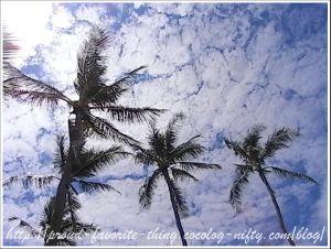 Lanikai_beach16